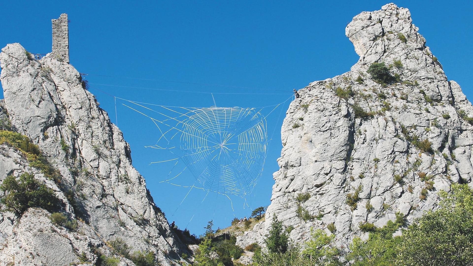 Toile d'araignée tissée ArtWork Alejandro Guzzetti