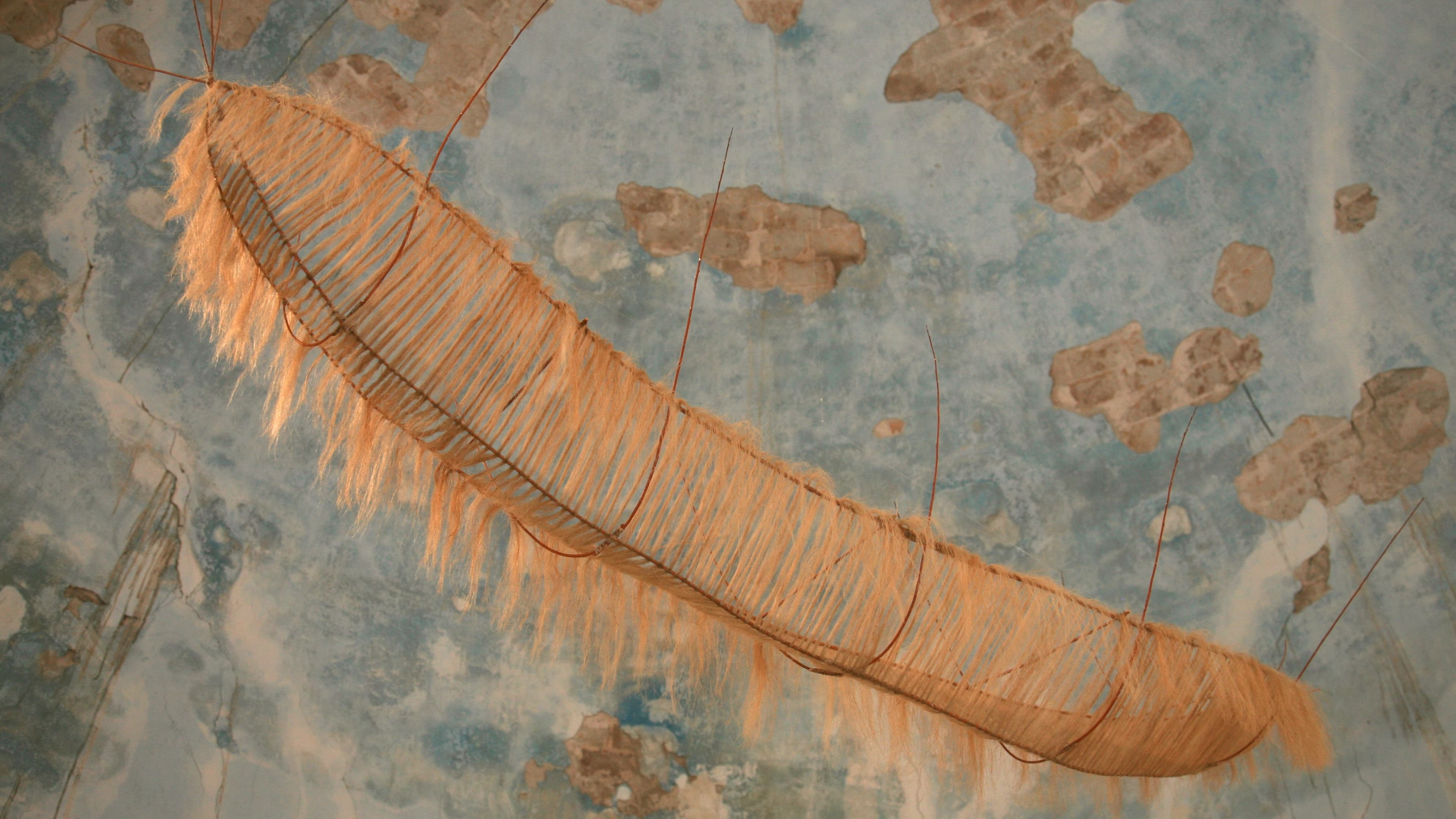 Weaving Amazonian Art Alejandro Guzzetti