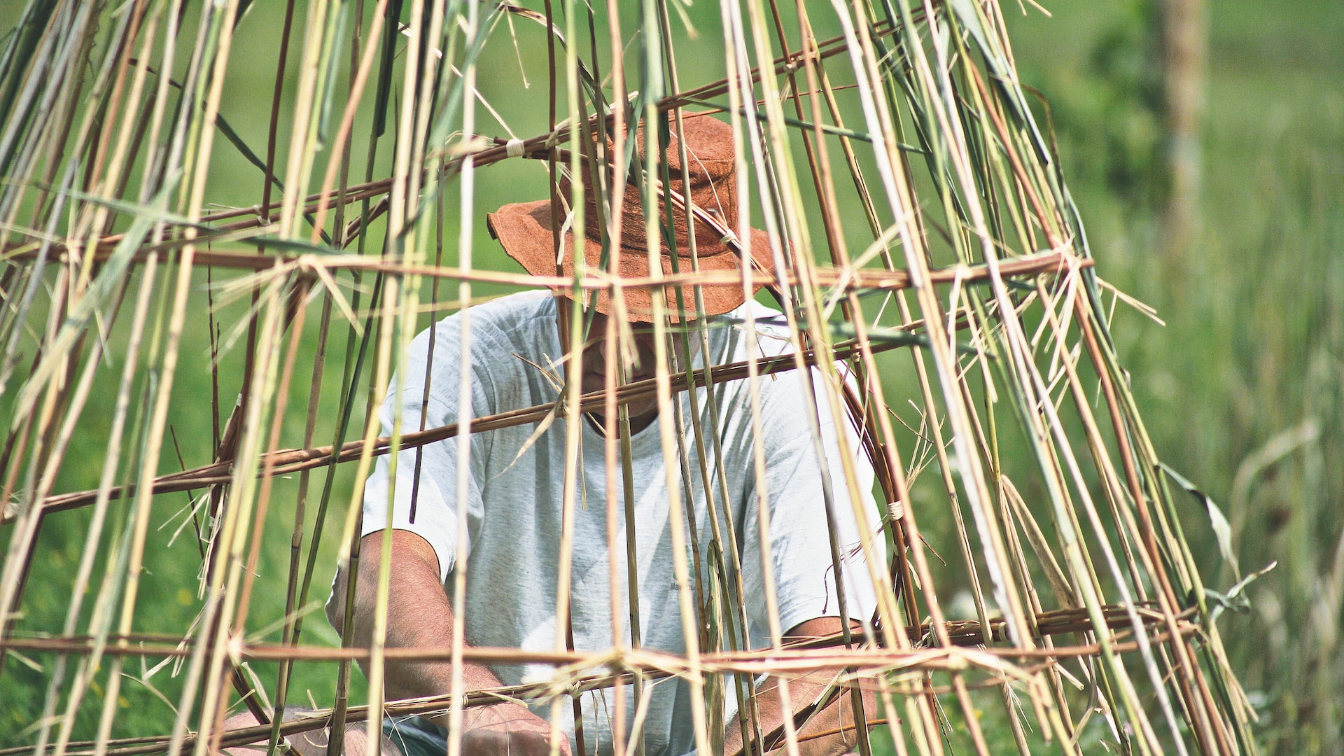 Land Art bamboo and swamp Alejandro Guzzetti