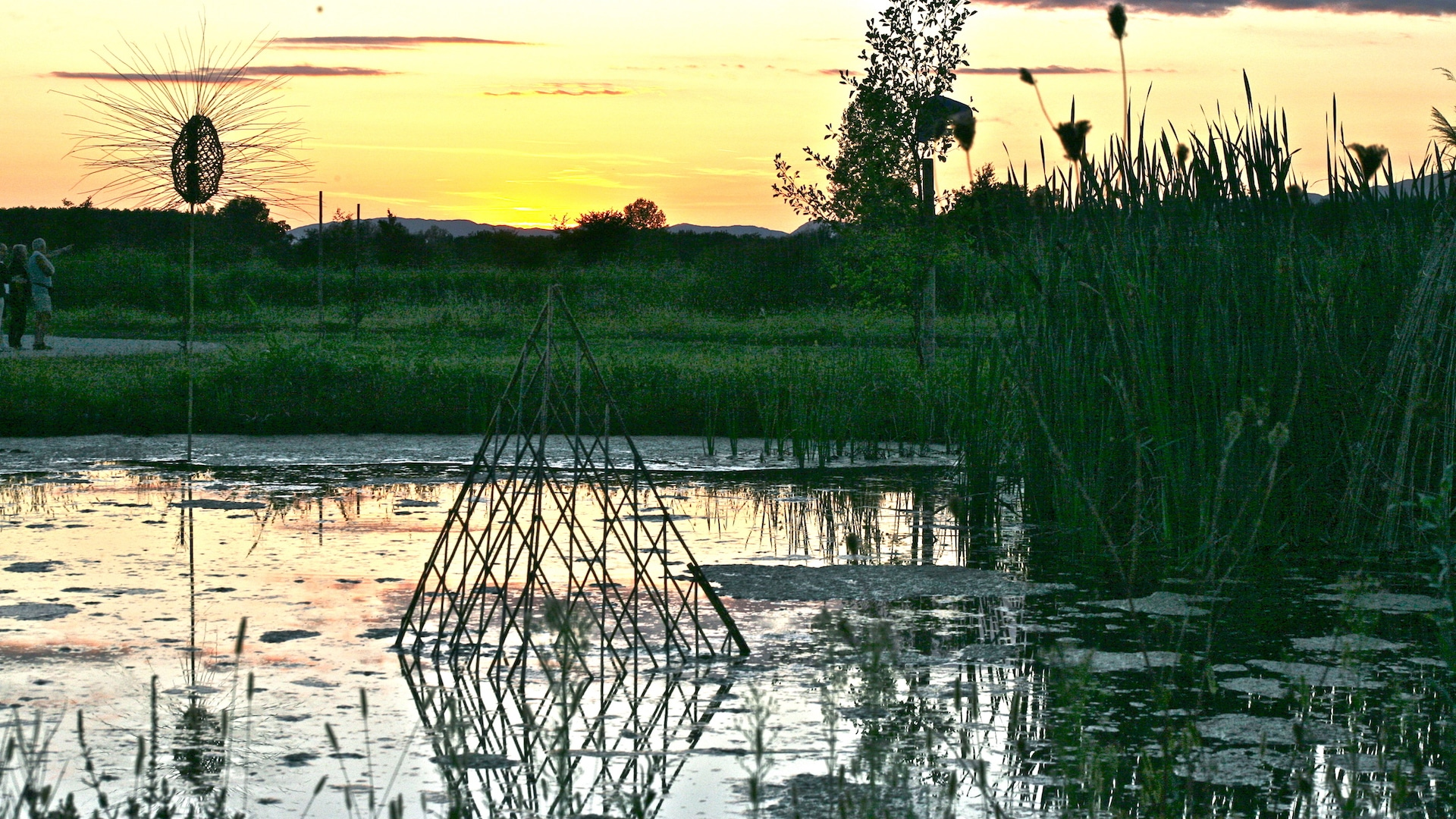 Land Art bamboo and swamp Alejandro Guzzetti
