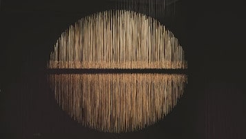 Alejandro Guzzetti Land Art exposition
