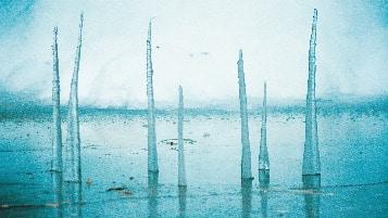 Environmental Artist Alejandro Guzzetti Ice
