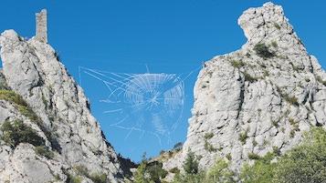 Giant Spider web Alejandro Guzzetti